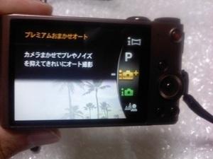 L03B0296.JPG